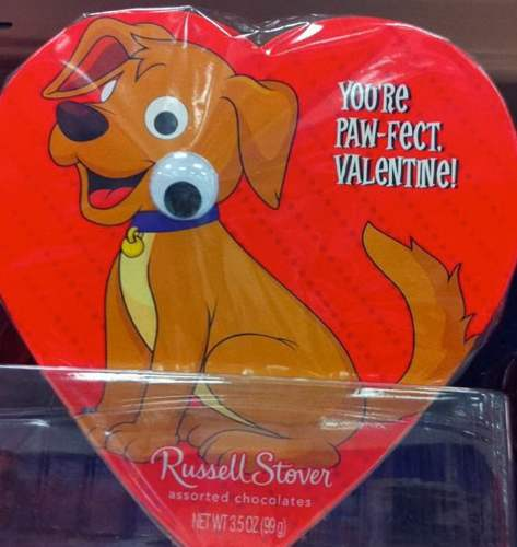 Russell Stover's Not Quite Paw-Fect Valentine
